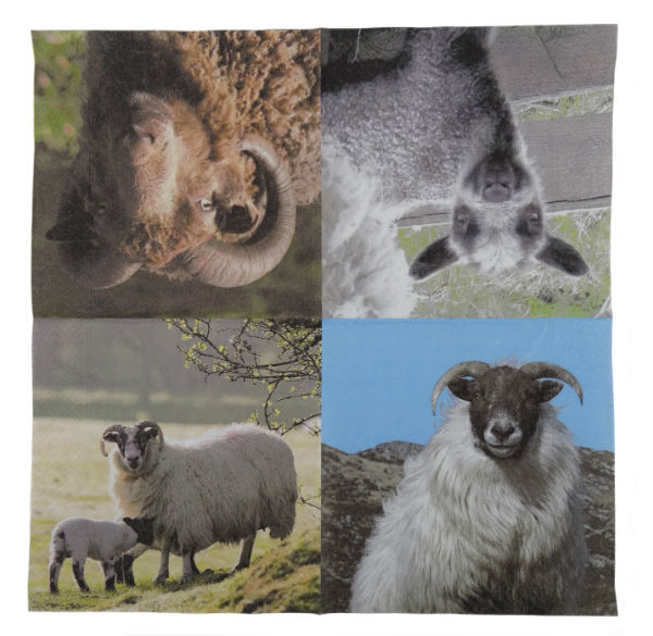 Sheep Napkins