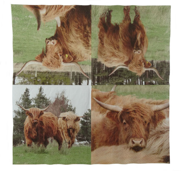 Highland Cow Napkins